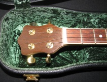 Walnut Veneered Headstock